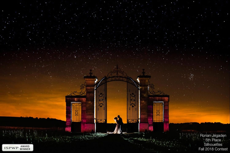 couple de mariés dans la nuit étoilée